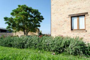 Assisium-agriturismo-esterno-3-