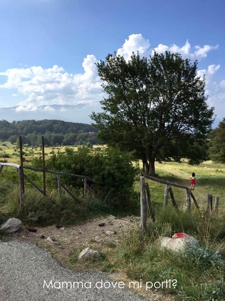 Imbocco-sentiero parco giochi nel bosco Prati di Tivo