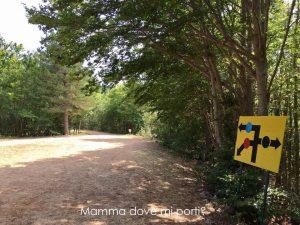Sentieri a piedi dalla seggiovia Roccaraso - Montagna con bambini Abruzzo