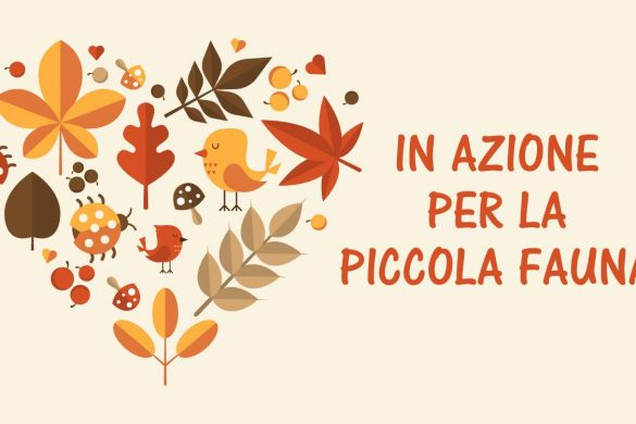 In Azione per la Piccola Fauna-Pescara
