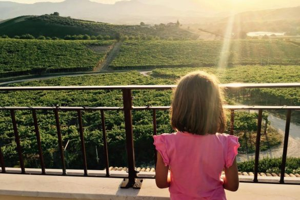 La Raccolta delle Olive dei Piccoli-Loreto Aprutino