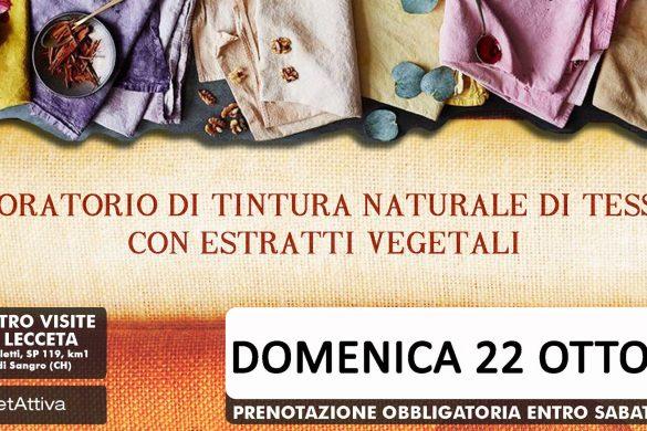 Laboratorio Tintura Naturale-Torino di Sangro-Chieti