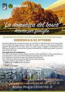 Le domeniche del bosco - Caramanico Terme- Pescara