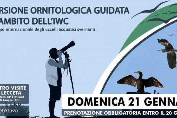 Escursione-Ornitologica-Guidata-Torino-di-Sngro-Chieti