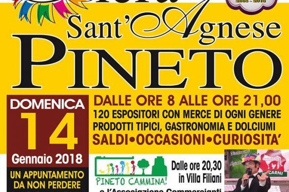 Fiera-di-Sant-Agnese-Pineto-Teramo
