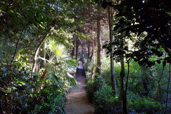 Caccia-al-Tesoro-Botanico-Parco-Giardino-dei-Ligustri-Loreto-Aprutino-PE