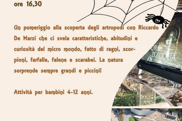 Micro-Cartiera-Musei-della-Cartiera-Papale-di-Ascoli-Piceno