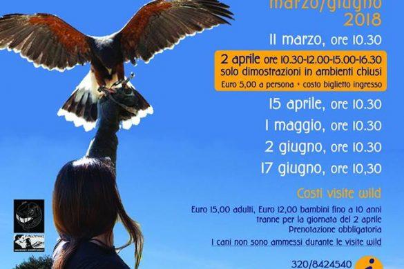 Visite-Wild-in-Fortezza-Civitella-del-Tronto-TE