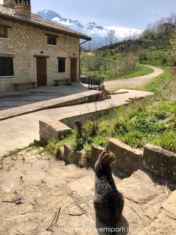 Colle Sette Vangeli Agriturismo ad Arsita