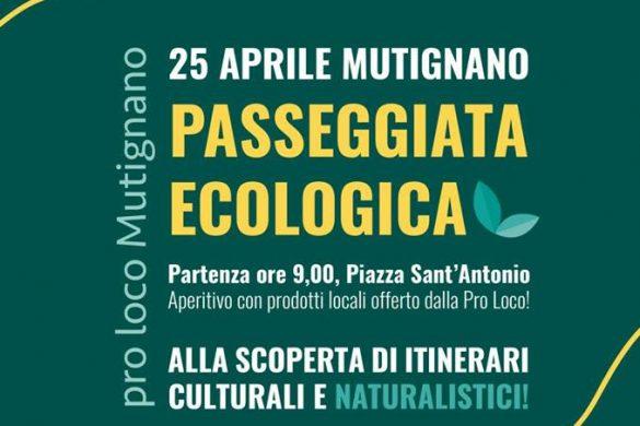 Passeggiata-Ecologica-Mutignano-Pineto-Te