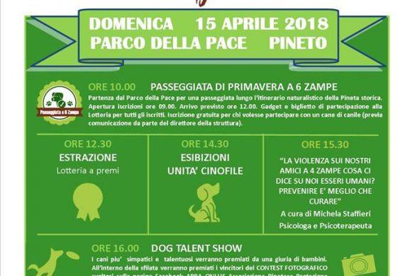 Pineto-Dog-Festival-Pineto-TE