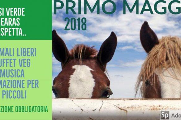 Primo-Maggio-Oasi-Verde-Mearas-Città-Sant-Angelo-PE