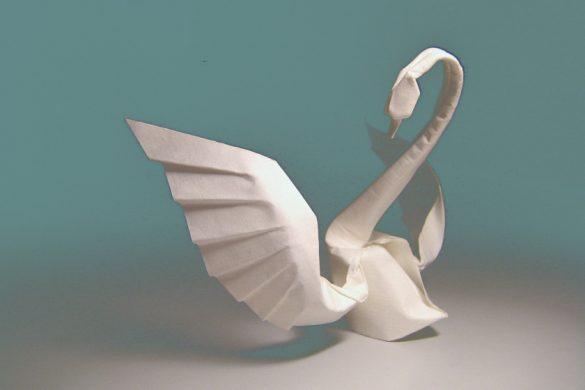 Laboratorio di origami - Il Paese dei Libri Selvaggi - Pescara