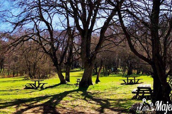 Passeggiata-nel-Bosco-di-Sant-Antonio-e-pranzo-in-agriturismo-Majellando-Pescocostanzo-AQ
