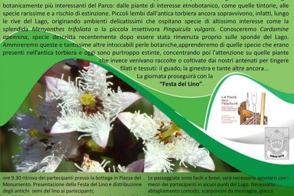 Al Lago di Campotosto tra piante rare e piante officinali - Campotosto - L'Aquila
