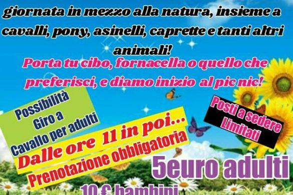 Picnic in fattoria - L'Arcobaleno Asd Pianella - Pescara