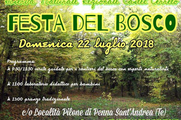Festa del Bosco - Riserva Naturale Castel Cerreto - Penna S. Andrea - Teramo
