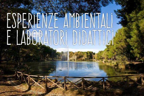 Laboratorio-Ludico-Didattico-Pineta-Dannunziana-Pescara