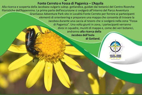 Nella Fossa di Paganica- Paganica - L'Aquila