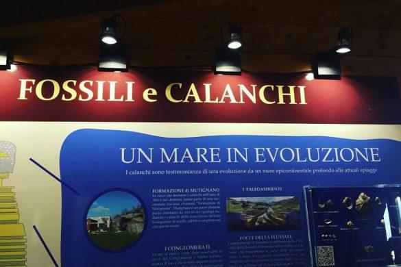 Un Geomare di Calanchi Riserva Naturale Regionale Oasi WWF Calanchi di Atri