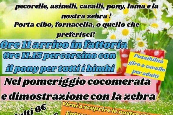 Ferragosto-in-Fattoria-L-Arcobaleno-ASD-Pianella-PE