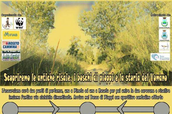 In-bici-verso-il-Vomano-Riserva-Borsacchio-Roseto-degli-Abruzzi-TE-Eventi-per-famiglie-Abruzzo