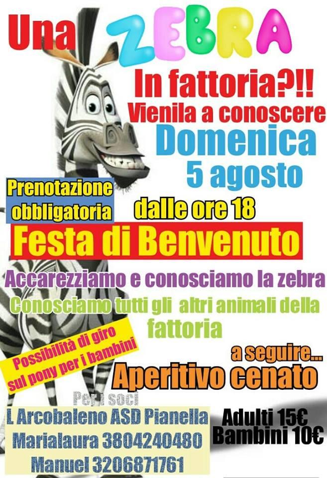 Una zebra in fattoria - L'Arcobaleno Asd Pianella - Pescara