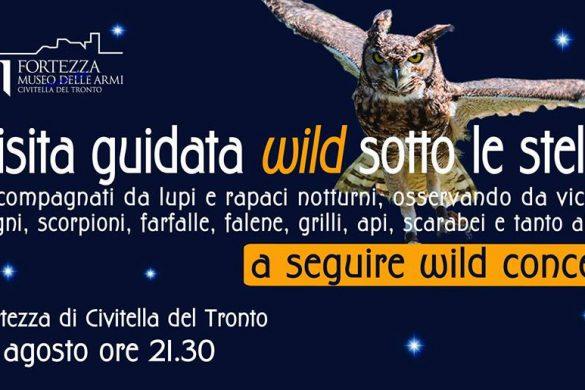 Visita-Guidata-Wild-sotto-le-stelle-Civitella-del-Tronto-TE