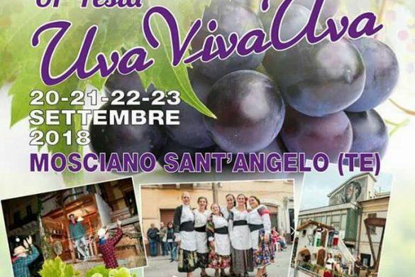 Uva-viva-uva-Mosciano-SantAngelo-TE- Eventi per bambini Teramo