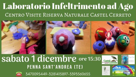 Laboratorio infeltrimento ago - Riserva Naturale Castel Cerreto - Penna Sant'Andrea Teramo