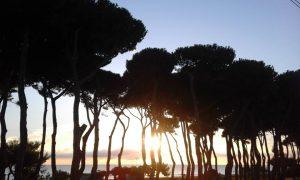 Storie-nel-Pineto-Torre-del-Cerrano-Pineto-TE- Eventi per bambini Teramo