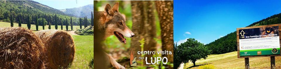 Centro Visita del Lupo a Popoli locandina