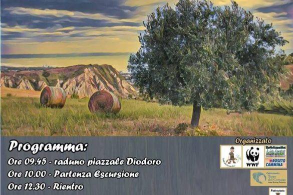 Escursione-Riserva-Borsacchio-Roseto-degli-Abruzzi-Teramo - Eventi per bambini in Abruzzo