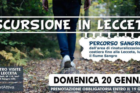 Escursione-in-lecceta-Torino-di-Sangro-Chieti - Eventi per bambini in Abruzzo weekend 19-20 gennaio