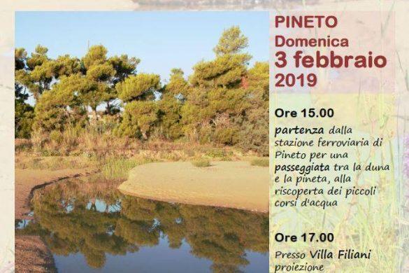 Passeggiata-tra-le-dune-Pineto-Teramo