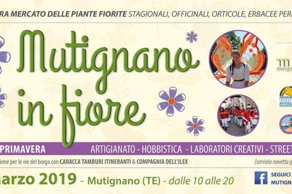Mutignano-in-Fiore-Mutignano-Pineto-Teramo