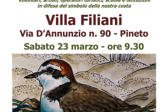 Salvafratino-2019-Villa-Filiani-Pineto-Teramo