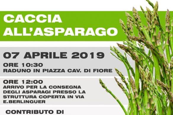 Caccia-all-Asparago-Vittorito-LAquila