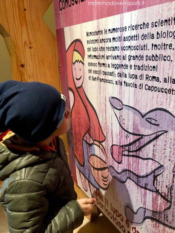 Centro Visita del Lupo a Popoli: museo e area faunistica