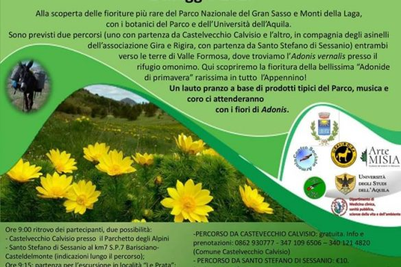 Il-Parco-in-Fiore-Castelvecchio-Calvisio-LAquila