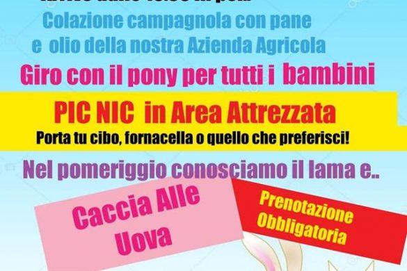 Pasquetta-in-Fattoria-LArcobaleno-ASD-Pianella-Pescara