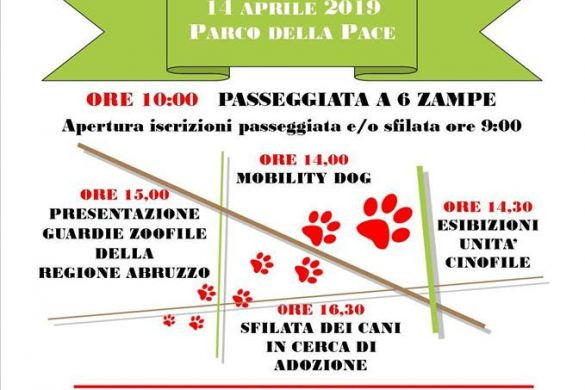 Pineto-Dog-Festival-Pineto-Teramo