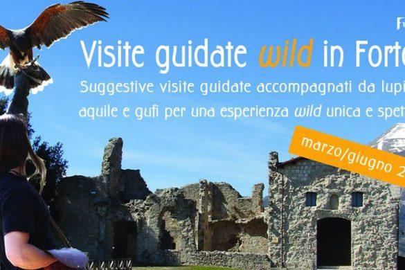 Visite-wild-in-Fortezza-Civitella-del-Tronto-Teramo