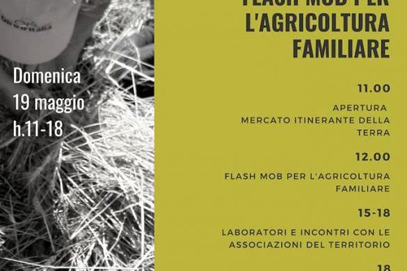 Comunità-e-Contadini-in-Festa-Villa-Zaccheo-Castellalto-Teramo