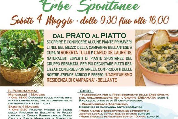 Festa-di-Primavera-Proloco-Bellante-Teramo