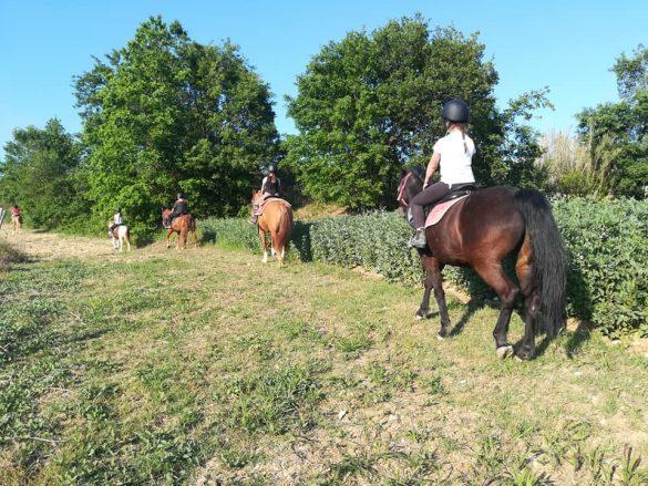 Passeggiata a cavallo da Equanime, centro equestre di Roseto degli Abruzzi, in provincia di Teramo