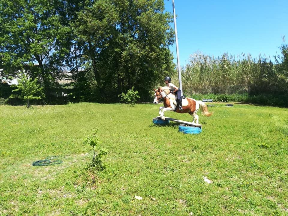 Prove di abilità da Equanime, centro equestre di Roseto degli Abruzzi, in provincia di Teramo