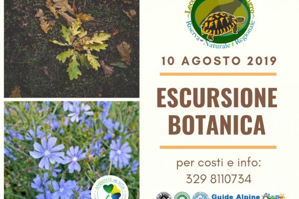 Escursione-Botanica-Lecceta-di-Torino-di-Sangro-Chieti