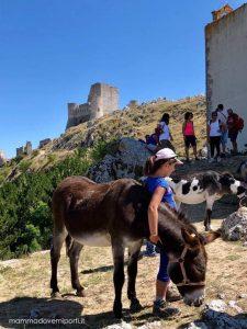 Passeggiata con gli asinelli a Santo Stefano di Sessanio e Rocca Calascio con i bambini