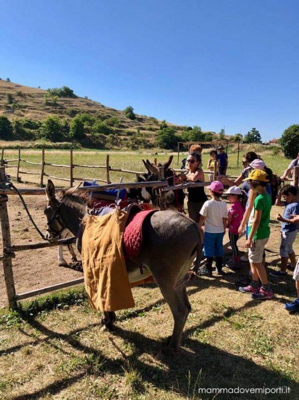 Asinelli a Santo Stefano di Sessanio e Rocca Calascio con i bambini